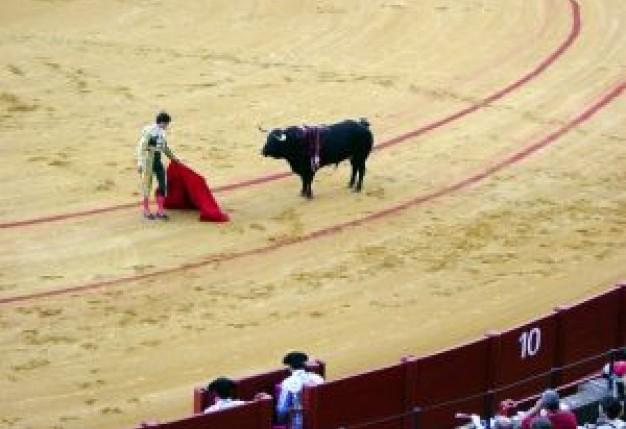 Walki byków w Alicante