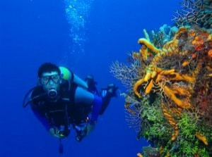hiszpania nurkowanie